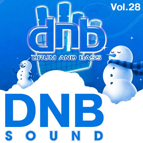 Drum & Bass Sound Vol.28 (2017)